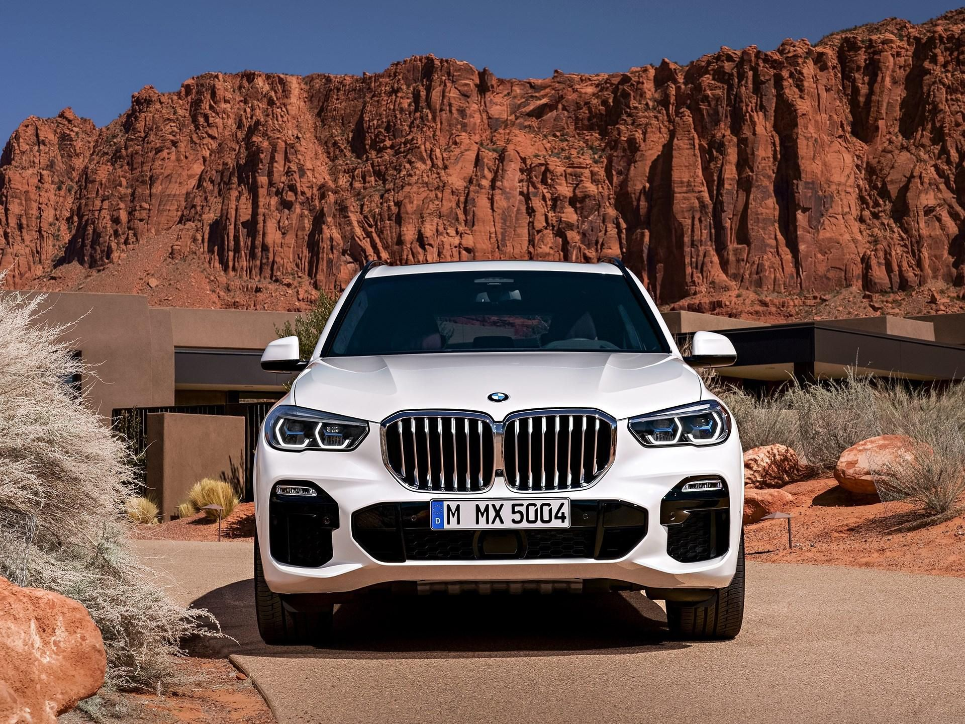 2019 bmw x5 revealed. Black Bedroom Furniture Sets. Home Design Ideas